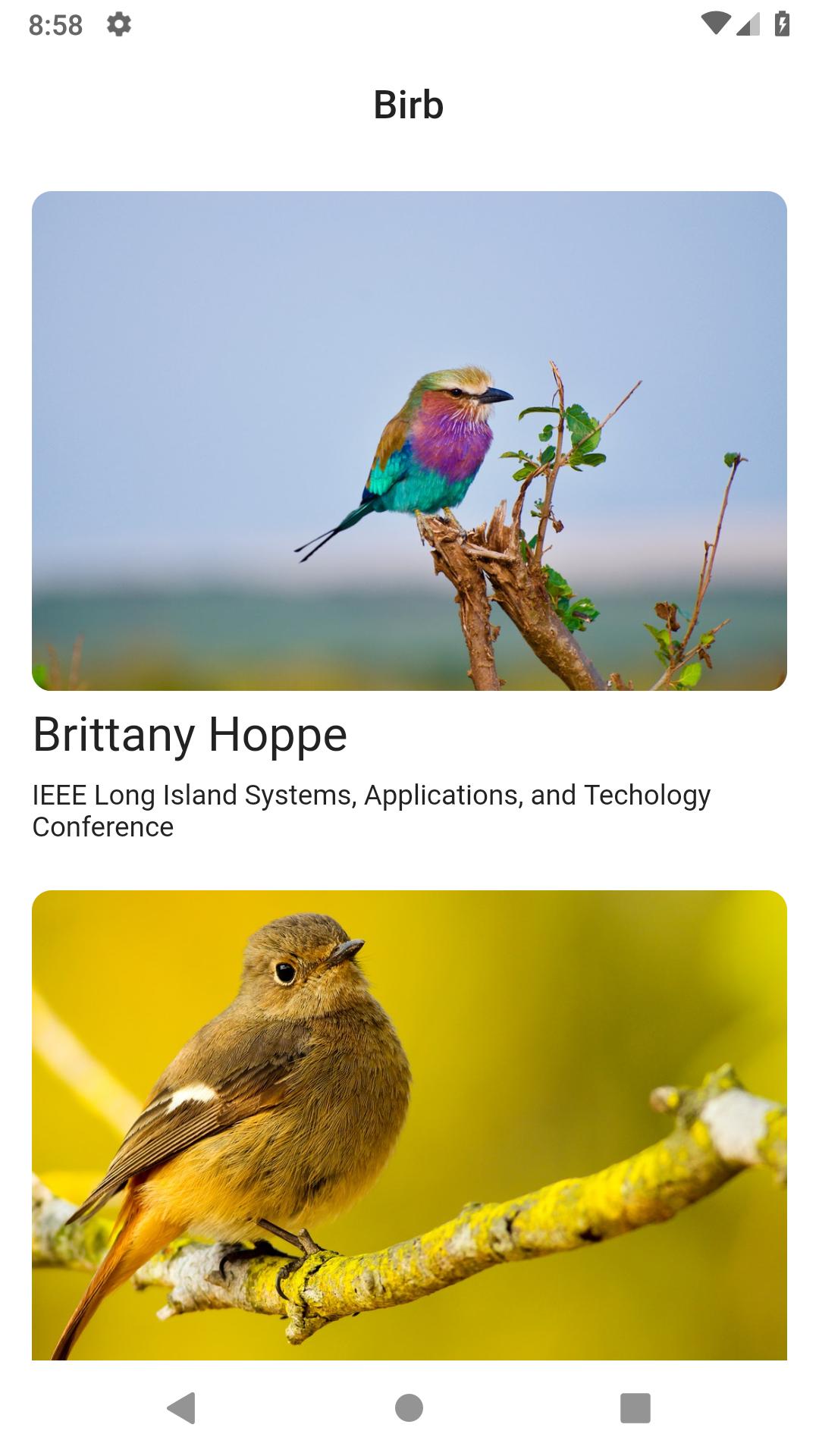 A month of Flutter: rendering network images - Bendyworks
